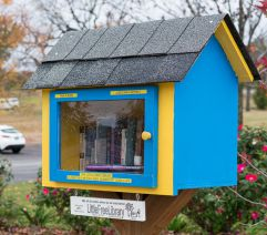2016 LCR LITTLE FREE LIBRARY SAMPLE